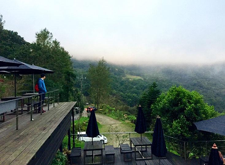 新北。三峽。高高高到不能再高。山陵好空氣。熊空茶園